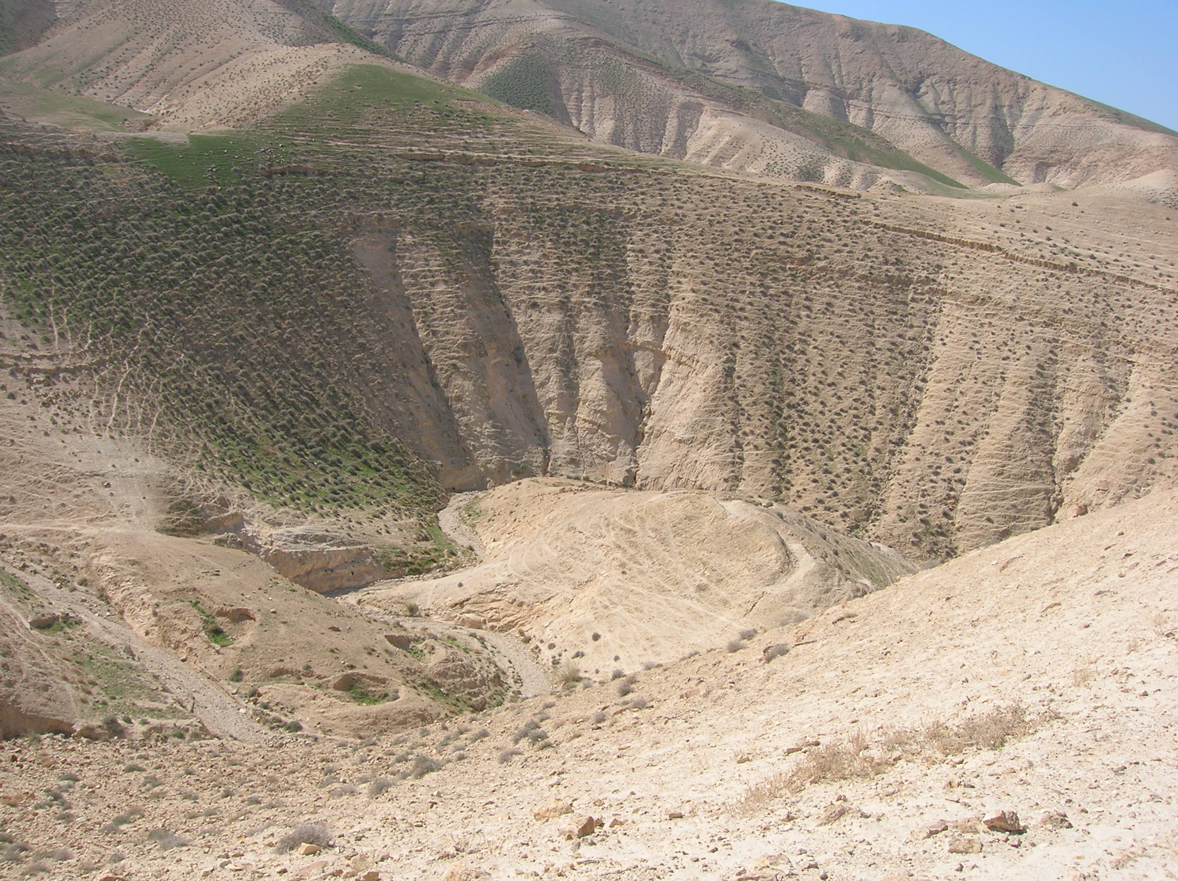 an overview of desertification Desertification, land degradation in arid, semi-arid, and dry sub-humid regions, is a global environmental problem accurate assessment of the status, change, and trend of desertification will be instrumental in developing global.